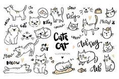 Cute cat illustration by Magic & Dreams on @creativemarket
