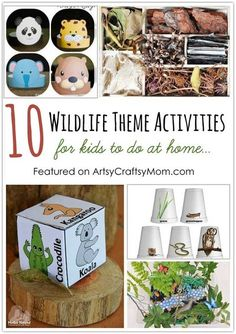 10 Wildlife Theme Activities For Kids To Do At Home for World Wildlife Day on March Let's get our young ones involved! Summer Camp Activities, Nature Activities, Animal Activities, Kids Learning Activities, Preschool Activities, Travel Activities, Animal Coverings, Wildlife Week, Plant Science