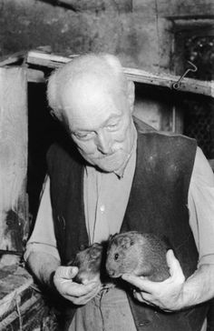 Adolf Dietrich (1877-1957) Swiss Naive Painter