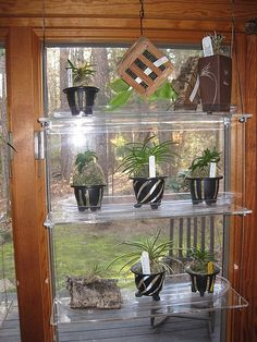 diy glass shelves in front of kitchen window a princess who loves rh pinterest com floating glass shelves for windows glass shelves for windows for plants