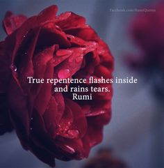 Explore inspirational, thought-provoking and powerful Rumi quotes. Here are the 100 greatest Rumi quotations on life, love, wisdom and transformation. Rumi Quotes Life, Rumi Love Quotes, Sufi Quotes, New Quotes, Spiritual Quotes, Words Quotes, Inspirational Quotes, Sayings, Islamic Quotes