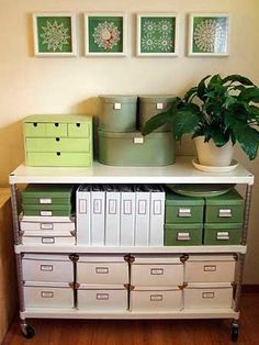 Losing My Census: 5 Simple Steps to Organize Your Genealogy in a 3 R...