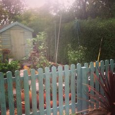 Our new fence......painted at last!