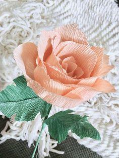 Shop flowers pinterest flowers handmade paper flowers and diy shop flowers pinterest flowers handmade paper flowers and diy flowers mightylinksfo