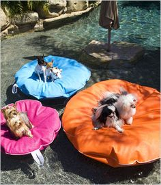 Dog pool floats in 3 sizes and 8 colors for pets up to 80 pounds. Outdoor dog bed, lightweight and durable for pools and decks.