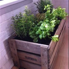 The plants are too densely packed but I like the idea. Could make the container yourself, too!