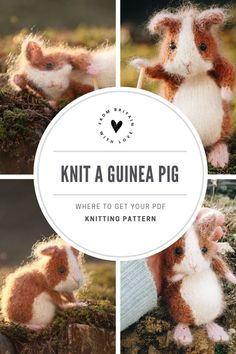 guinea pig knitting pattern by claire garland aka dot pebbles knits available to buy as a PDF download on Etsy - we also share lots of other ideas and exclusive free patterns and ideas by Claire if you visit the blog - all the links you need are in the blog post #knitting #pattern #guineapig #etsy Knitting Patterns Free, Free Knitting, Free Pattern, Craft Tutorials, Craft Projects, Willow Weaving, Diy Step By Step, Felted Slippers, Etsy Uk