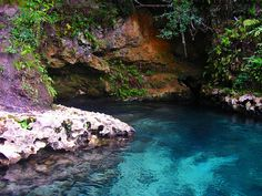 Emerald Spring, Econfina Creek Clearwater Canoe Trail, Florida by Phil's 1stPix, via Flickr