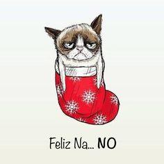 Feliz Na... NO. Grumpy cat nos desea una Feliz Navidad... a su modo. @catherine gruntman gruntman Milam