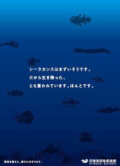 沼津港深海水族館 事業・商品・サービスブランディング事例|ブランディング、クリエイティブ、CI、スローガン、会社案内 作成 株式会社パラドックス