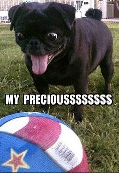 He never saw a ball he didn't love! #lol