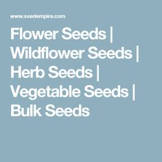 Home Reimer Seeds Vegetable Seeds Flowers Seeds Herb Seeds