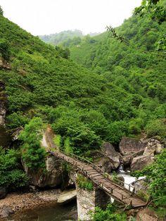 Kayaaltı köprüsü /Turnasuyu vadisi/Ordu/// Gerce köyü yakınında bulunan Kayaaltı Köprüsü, Turnasuyu üzerindeki en eski köprülerden.