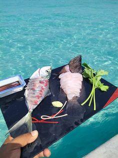 ตกหมึก ตกปลา กับ ไต๋บุ๊ค แสมสาร จังหวัดชลบุรี 1