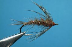 hendrickson flymph nymph phase (mixed hare mask and partridge) - By William Anderson - williamsfavorite.com (Spider Flymph Soft Hackle)