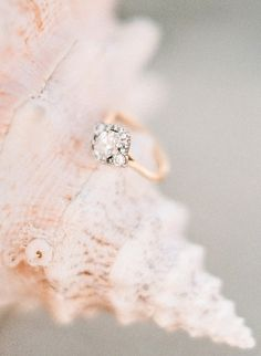 Oval Cut Diamond, French Halo, & Gold Band: http://www.stylemepretty.com/2015/05/16/23-vintage-inspired-engagement-rings/