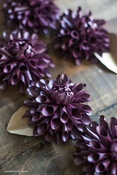 DIY Paper Dahlia by lia griffith | Project | Papercraft | Home Decor / Decorative | Kollabora