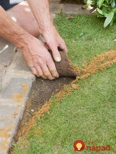 Garden Edging Ideas: Shaping A Lawn With Slate Chippings Lawn Edging, Garden Edging, Lawn And Garden, Landscape Plans, Landscape Design, Lawn Care Companies, Edging Ideas, Artificial Turf, Front Yard Landscaping