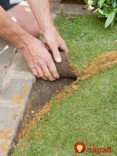 Fantastické nápady pre váš krásny trávnik. Neváhajte a skúste to, konečne môžete mať záhradu presne podľa vašich predstáv. Ukážeme vám, ako trávnik krásne vytvarovať, oddeliť od zvyšku záhrady, ale aj to, ako môžete rýchlo opraviť suché škvrny na povrchu. Inšpirujte sa! Ako odstrániť kamene, hrbolce a mať trávnik perfektne zarovnaný? Najjednoduchšie je trávnik jednoducho otvoriť,...
