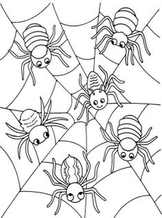 Halloween Coloring Pages Spider - Animal Coloring Pages, Halloween On do Coloring Pages