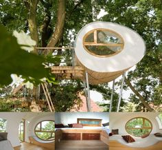 Luxury Tree Houses Designs | ... architect, a tree expert, and established, reputable craftsmen