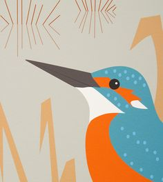 Kingfisher Perching on Reeds Giclée Print by butterflytrack