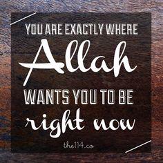 Alhamdulillah ❤