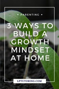 """Research has found that kids who believe they can """"get smarter"""", perform better. Here are 3 ways you can instill that growth mindset in your kids at home. Click through to read them all! Parenting Teens, Parenting Advice, Teaching Social Studies, Teaching Resources, Autism Resources, Good Communication Skills, Middle School Teachers, High School, Online Tutoring"""