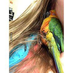 A bird fell asleep in her hair... #9gag by 9gag