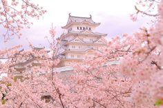 """""""城""""観光で歴史を感じよう!おすすめ5選/aumo【アウモ】 Violet Aesthetic, Aesthetic Japan, Japanese Aesthetic, Aesthetic Themes, Aesthetic Images, Travel Aesthetic, Sakura Wallpaper, Wallpaper Pc, Cute Wallpaper Backgrounds"""