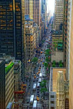Fifth Avenue – GloHoliday