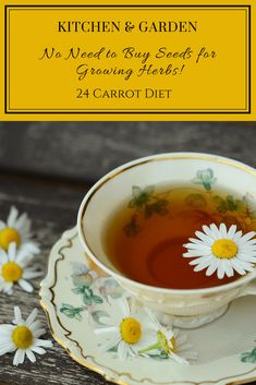 """Growing herbs for """"free"""" from spices and herbal tea   #24CarrotDiet   frugal hacks   herb garden   tea bags   DIY"""