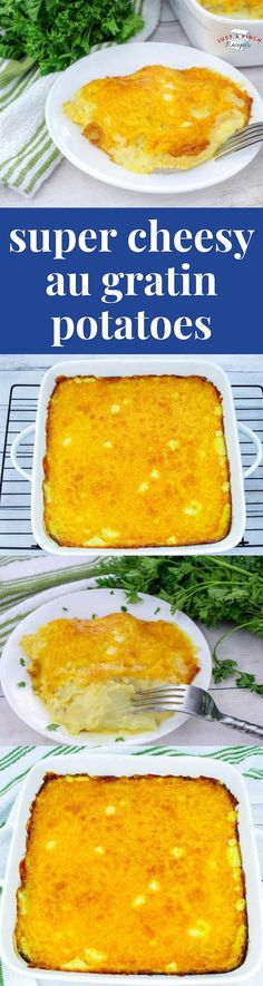 Make these cheesy au gratin potatoes and you'll know why this recipe won a blue ribbon. The scalloped potatoes have a creamy cheesy sauce that's nicely salted with a hint of onion flavor. Potato Side Dishes, Vegetable Side Dishes, Vegetable Recipes, Main Dishes, Flan, Potatoes Au Gratin, Cheesy Sauce, Daily Meals, Side Recipes