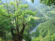 Wakacje w Czarnogórze
