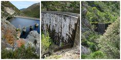 Three Dams Hike Fernkloof Nature Reserve