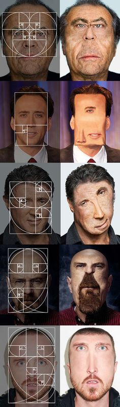 Someone just applied the Fibonacci sequence to celebrity faces. I laughed so hard. (By Igor Kkk)