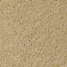 ELEGANT FORM IV 12 AFTER MIDNIGHT Texture TruSoft® Carpet - STAINMASTER®