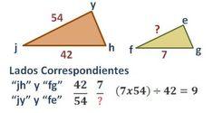Los triángulos semejantes tienen la misma forma, diferente tamaño y medidas proporcionales.