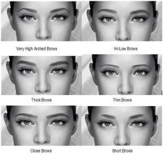 Type of eyebrows