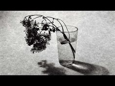Imprescindibles - Tony Catany, el tiempo y las cosas