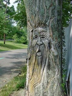 Tree Stump Carving – Chiseling Artwork Into Tree Trunks Like A Boss - Modern Tree Carving, Wood Carving Art, Wood Carvings, Carving Board, Land Art, Unique Trees, Unique Art, Tree Trunks, Gardens