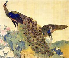 重要文化財《孔雀牡丹図(くじゃくぼたんず)》円山応挙(1733年-1795年)筆 相国寺承天閣美術館蔵
