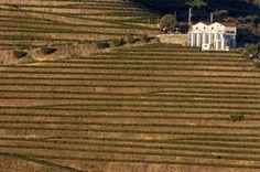 Associação do Douro com projecto-piloto para promover patrimónios mundiais Douro, Portugal, Places, Entrepreneurship, Pilots, Europe, Advertising