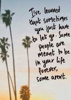 """""""I've learned that sometimes you just have to let go. Some people are meant to be in you life forever, some aren't."""""""