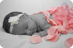 newborn photo...rose petals would be a great investment to buy:)