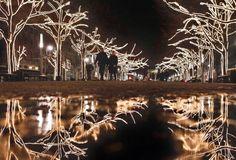 Christmas Displays around the World | 1000 x 680 · 129 kB · jpeg, Christmas Lights around the World