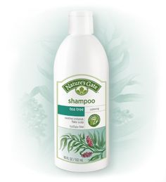 Nature's Gate Tea Tree Shampoo: This leaves hair feeling clean, but not stripped of its oils or too dry.  Also great for an itchy, flaky scalp.  The accompanying conditioner can be used if you have super dry hair, but may not be necessary at all if you have an oily scalp and do not directly put shampoo on your ends!