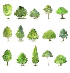 Watercolor landscape with trees and houses vector image on VectorStock Tree Illustration, Landscape Illustration, Watercolor Illustration, Watercolor Trees, Watercolor Landscape, Photoshop, Bush Drawing, Trees Drawing Tutorial, Tree Plan