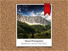 Polaroid-style-photo-gallery Fashion Photo, Polaroid, Nature Photography, Photo Galleries, Gallery, Art, Style, Art Background, Swag
