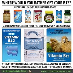 People who defend eating animal products as necessary for health have two swords protein and Vitamin B12. We are getting smarter about protein and many people now accept that plant foods are a healthier source of protein but most people including health care professionals are confused about B12. It's true that animal products contain B12 and vegans are at risk of B12 deficiency but absorbing B12 from animal products is a very complex process and people who eat meat may be at equal or greater…
